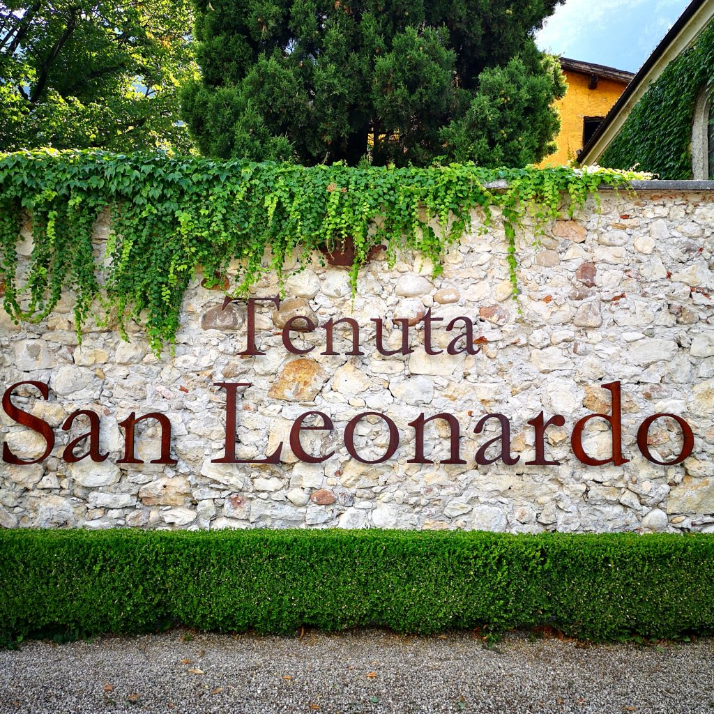 TENUTA SAN LEONARDO - VISITA IN CANTINA
